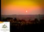 Pinot Grigio Ramoro Terre di Chieti IGP 2017 Lunaria Biowein