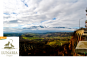 Cerasuolo d'Abruzzo Rosato Pettirosce DOC 2017 Lunaria Biowein