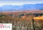 ARMONIA Blanc 2016/2017 Domaine Bassac Biowein
